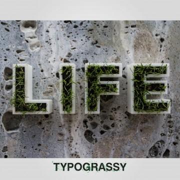 Typograssy